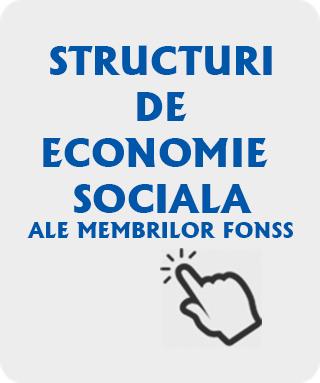 structuri-de-economie-sociala